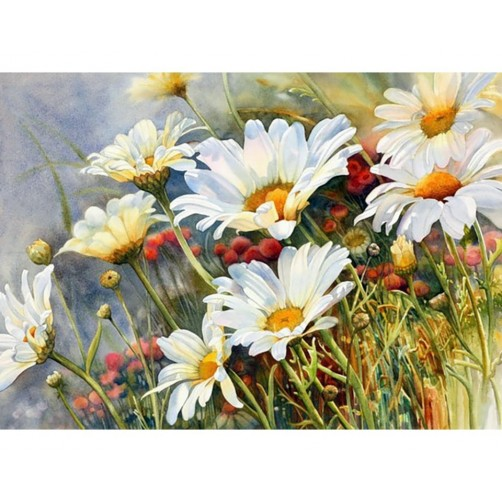 Collection D'Art Diamond Painting Cute Field camomiles Misura 27x38 Cm