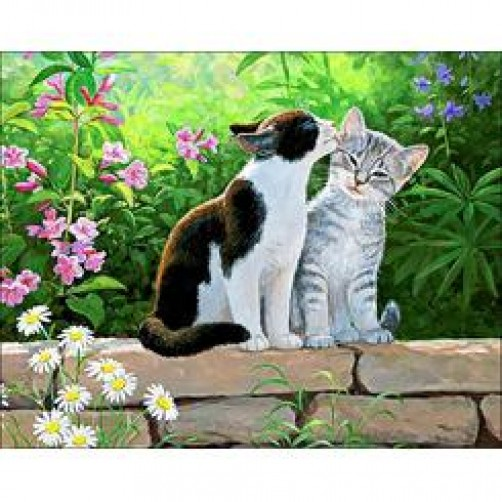 Collection D'Art Diamond Painting 48x38cm, Cat Morning