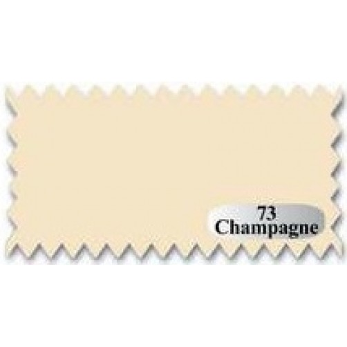 TULLE CHAMPAGNA 73